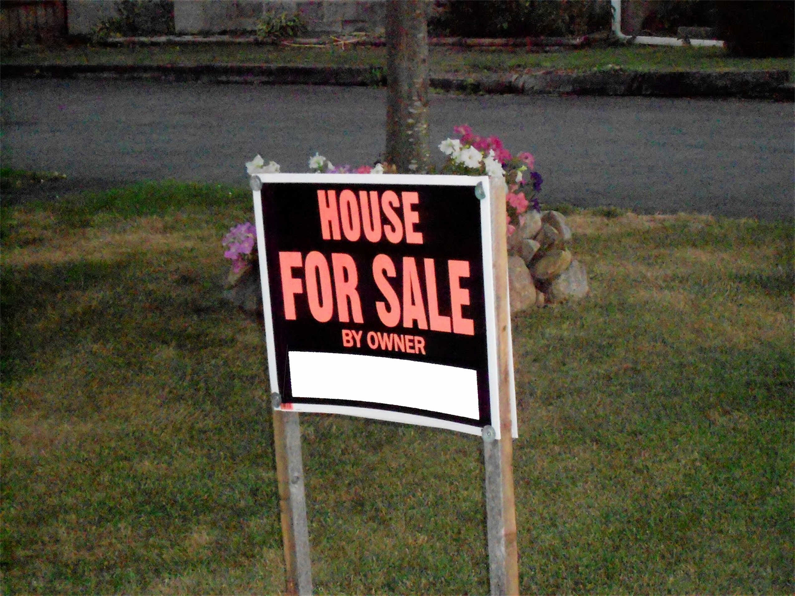 "Lawn sign that says ""House For Sale By Owner"""